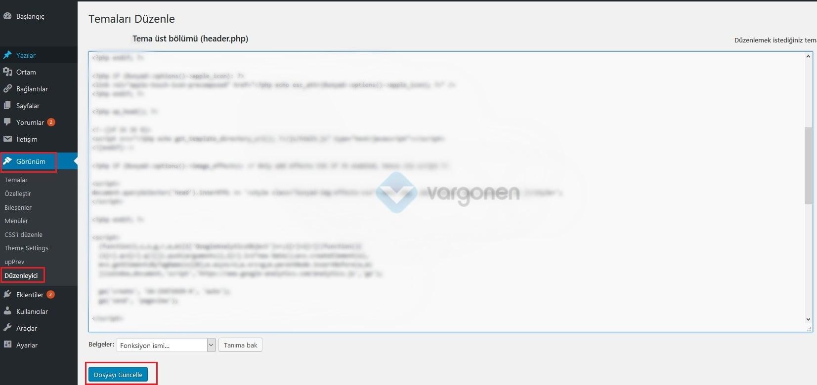 wordpress düzenleyeci analyatics scripti ekleme