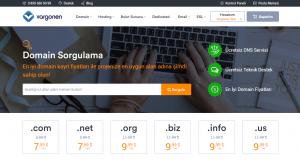 Domain Sorgulama ve Kayıt Nasıl Yapılır?