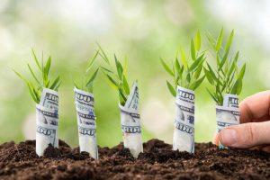 Domain Yatırımcılığı Nedir?