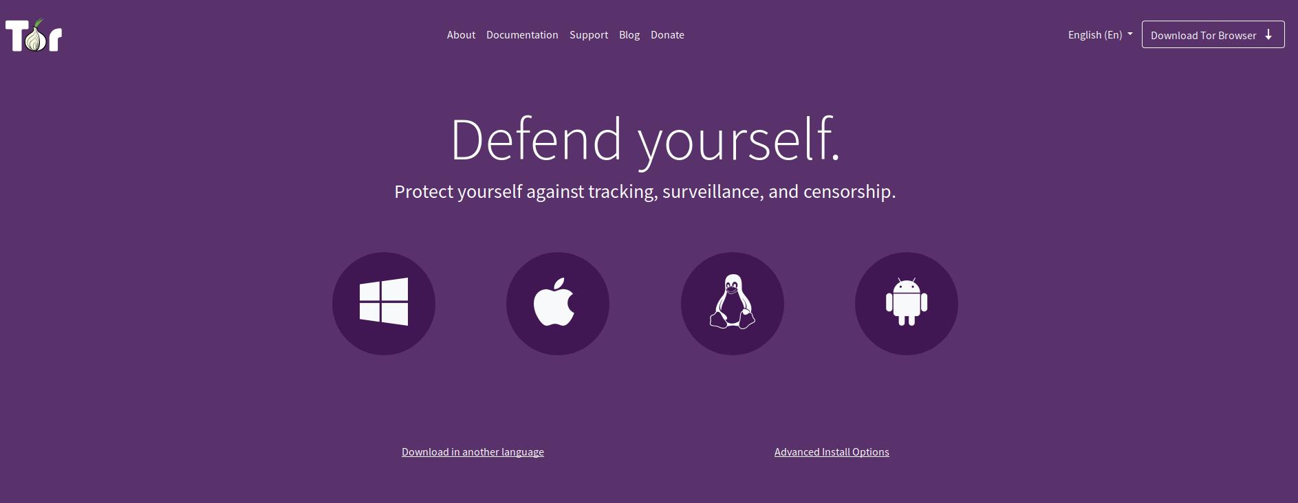 You are currently viewing Tor Browser Nedir? Kimler için Uygundur?