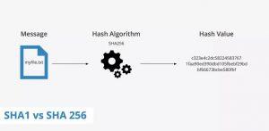 SHA Secure Hashing Algoritması Nedir?